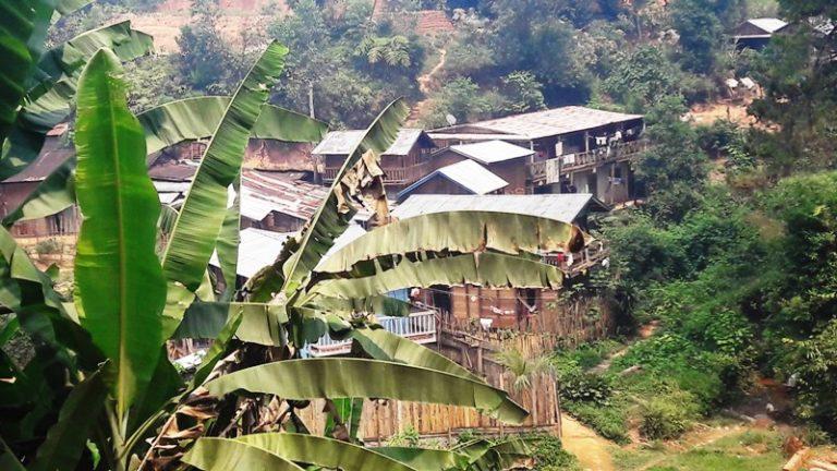 Madagascar (9)